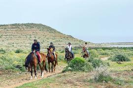 Alquiler de finca para celebraciones en Las Palmas, Bodas en La Manigua, Telde